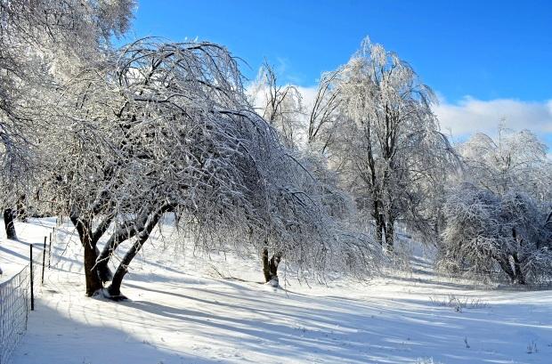01_winterseason