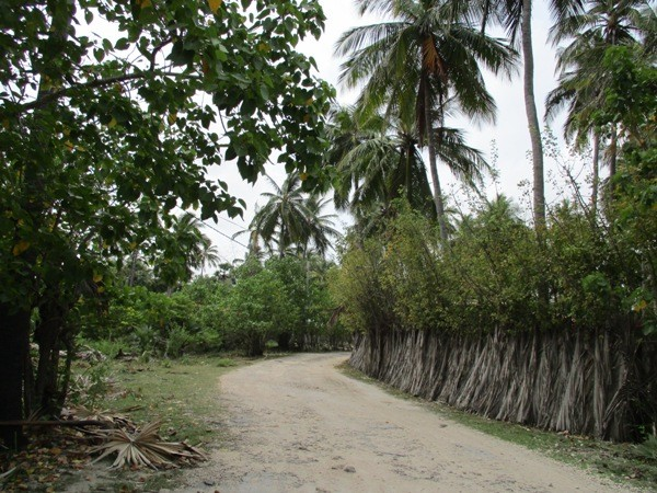 The sandy path along which Vidhya traveled to school every day